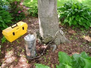 Environmentally Friendly Tree Injection